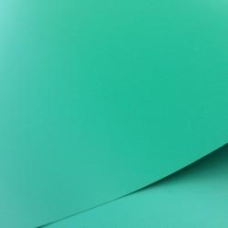 Flex de découpe vert 18*28cm